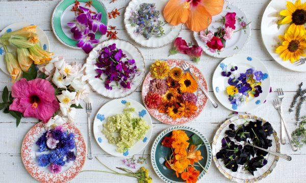 Cucinare con i fiori